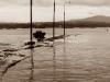 Puente de A Illa de Arousa